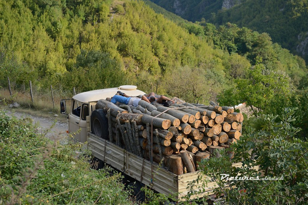 Holztransport in Albanien
